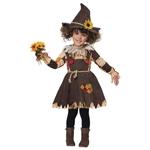 Pumpkin-Patch-Scarecrow-Dress-Toddler-Costume