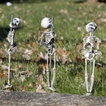 Staked-Skeleton-Set-3ct