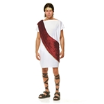 White-Wine-Toga-Man-Teen-Costume