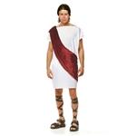 White-Wine-Toga-Man-Adult-Mens-Costume
