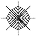 Giant-Shimmering-Spider-Web