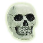 Glow-in-the-Dark-Plastic-Skull-8in