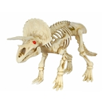 Triceratops-Skeleton-Prop-3ft