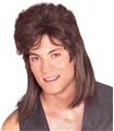 Mullet-Brown-Wig