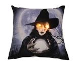 Witch-Light-Up-Pillow