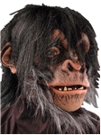 Chimp-Adult-Mask