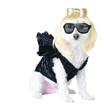 Lady-Gaga-Pet-Costume