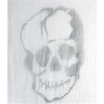 Large-Skull-on-Freaky-Fabric