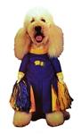 Pom-Pom-Pet-Costume