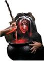 Reel-FX-Evil-Witch-Prosthetic-Kit