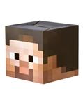 Minecraft-Cardboard-Steve-Head